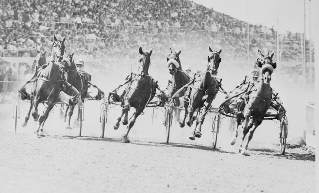 Tasmania steeped in trotting history