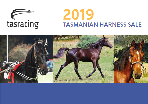 2019 Tasmanian Harness Yearling Sale results