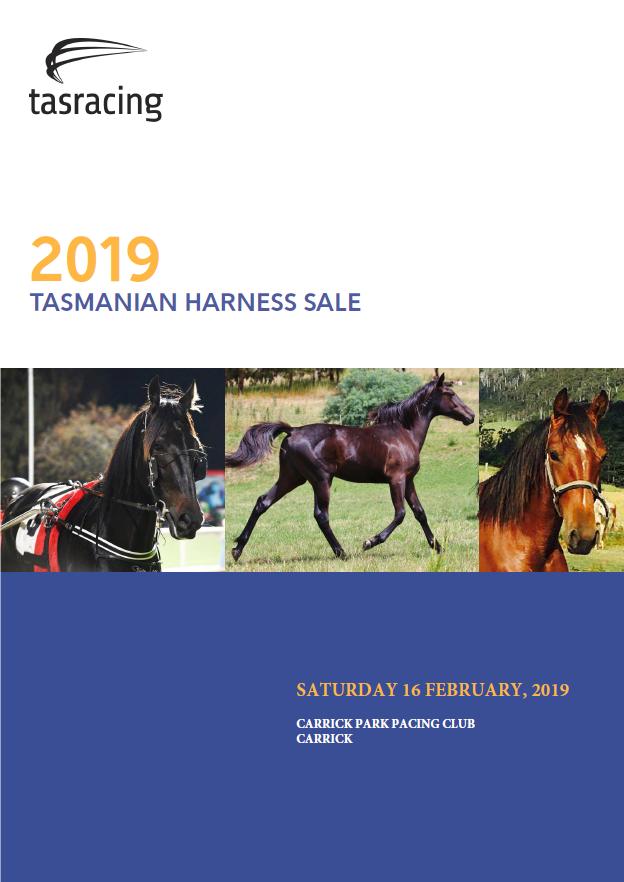 Leading sires represented at Tasmanian Harness Yearling Sale