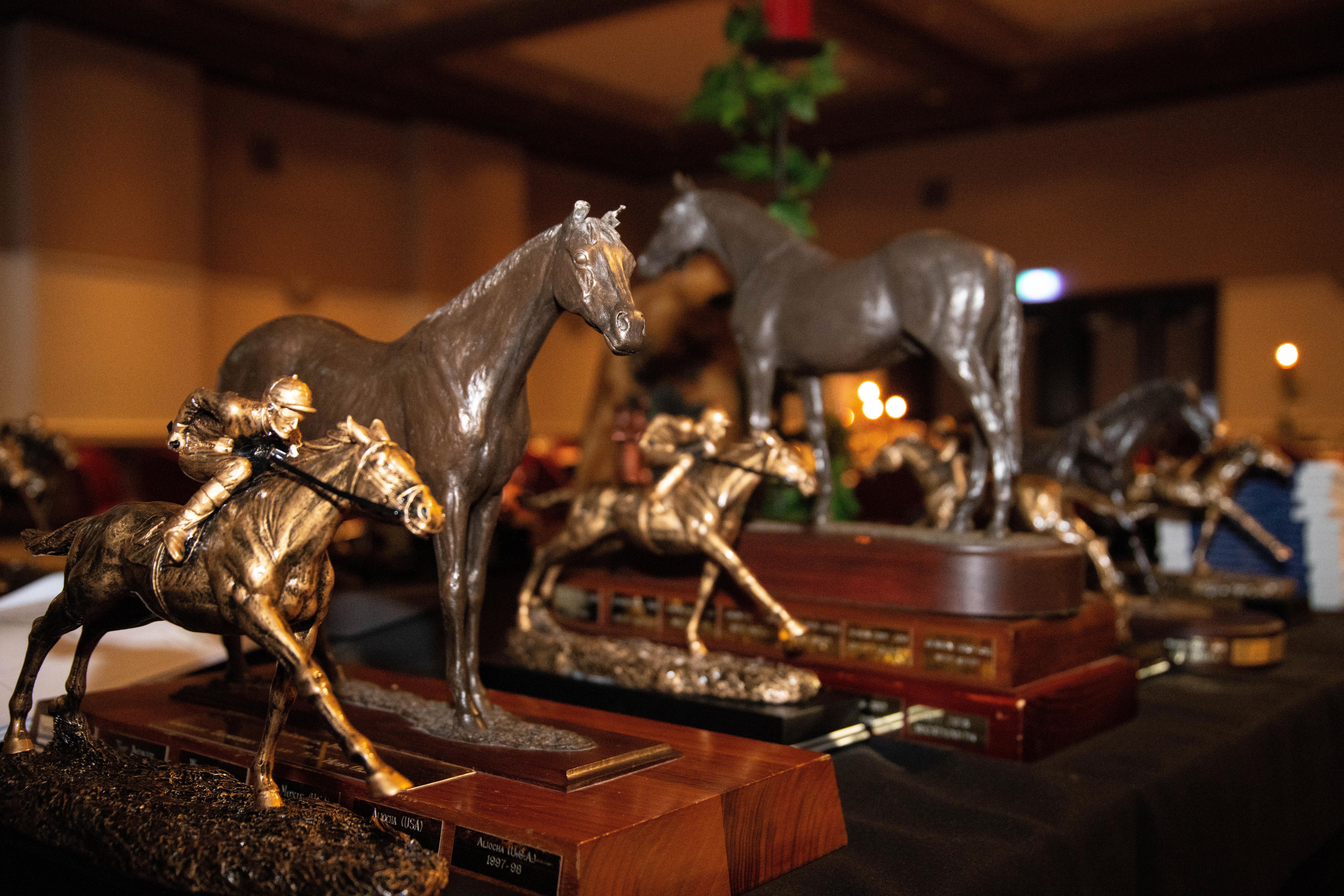 2019 Tasmanian Horse of the Year Awards