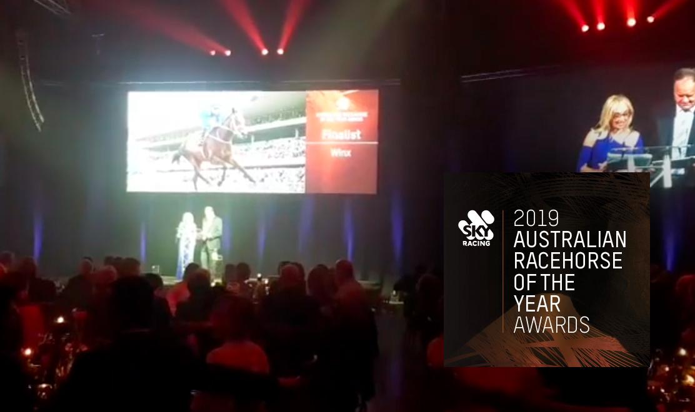 Winx wins Australian Racehorse of the Year again